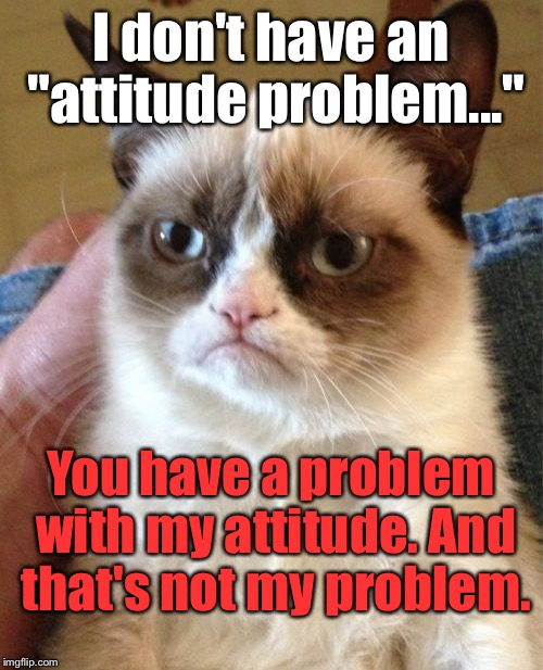 "Grumpy Cat Meme | I don't have an ""attitude problem..."" You have a problem with my attitude. And that's not my problem. 