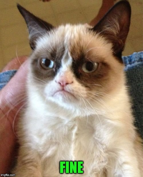 Grumpy Cat Meme | FINE | image tagged in memes,grumpy cat | made w/ Imgflip meme maker