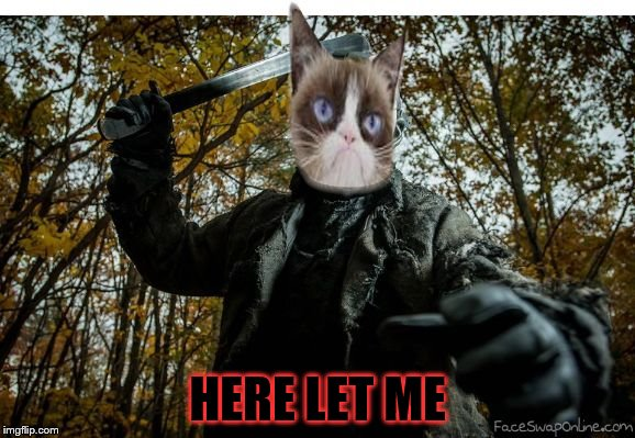 grumpy cat jason | HERE LET ME | image tagged in grumpy cat jason | made w/ Imgflip meme maker
