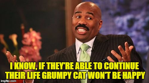 Steve Harvey Meme | I KNOW, IF THEY'RE ABLE TO CONTINUE THEIR LIFE GRUMPY CAT WON'T BE HAPPY | image tagged in memes,steve harvey | made w/ Imgflip meme maker