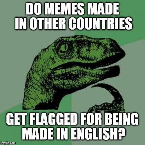 Philosoraptor Meme | DO MEMES MADE IN OTHER COUNTRIES GET FLAGGED FOR BEING MADE IN ENGLISH? | image tagged in memes,philosoraptor | made w/ Imgflip meme maker