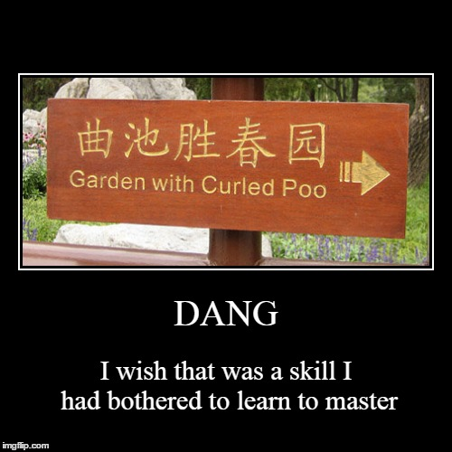 I never quite had the sphincter control | DANG | I wish that was a skill I had bothered to learn to master | image tagged in funny,demotivationals,translation,memes | made w/ Imgflip demotivational maker