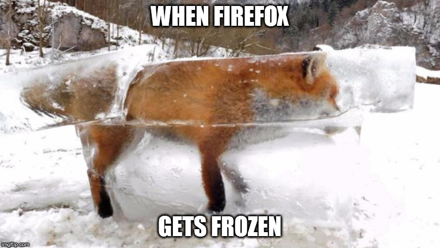 Mozila firefox froze again... | WHEN FIREFOX GETS FROZEN | image tagged in firefox frozen | made w/ Imgflip meme maker