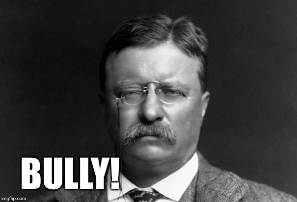 Serious Teddy Roosevelt | BULLY! | image tagged in serious teddy roosevelt | made w/ Imgflip meme maker