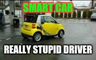 SMART CAR REALLY STUPID DRIVER | image tagged in smart car | made w/ Imgflip meme maker