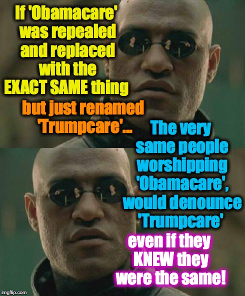 It really doesn't matter...  It's the hate that counts.... | If 'Obamacare' was repealed and replaced with the EXACT SAME thing even if they KNEW they were the same! but just renamed 'Trumpcare'... The | image tagged in what if,matrix morpheus,double standard | made w/ Imgflip meme maker