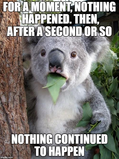 Surprised Koala Meme | FOR A MOMENT, NOTHING HAPPENED. THEN, AFTER A SECOND OR SO NOTHING CONTINUED TO HAPPEN | image tagged in memes,surprised koala | made w/ Imgflip meme maker