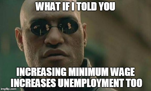 Matrix Morpheus Meme | WHAT IF I TOLD YOU INCREASING MINIMUM WAGE INCREASES UNEMPLOYMENT TOO | image tagged in memes,matrix morpheus | made w/ Imgflip meme maker