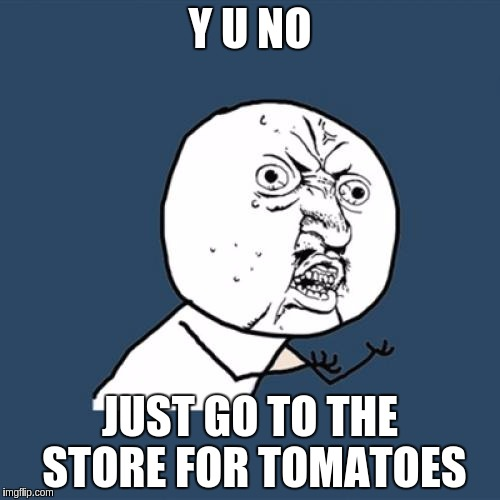 Y U No Meme |  Y U NO; JUST GO TO THE STORE FOR TOMATOES | image tagged in memes,y u no | made w/ Imgflip meme maker