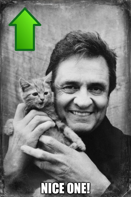 Johnny Cash Cat | NICE ONE! | image tagged in johnny cash cat | made w/ Imgflip meme maker