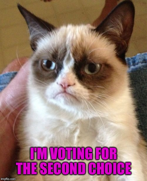Grumpy Cat Meme | I'M VOTING FOR THE SECOND CHOICE | image tagged in memes,grumpy cat | made w/ Imgflip meme maker