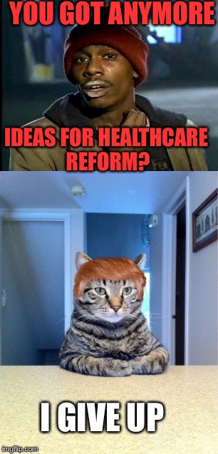 TrumpCat is questioned about the failure of his healthcare reform. | YOU GOT ANYMORE IDEAS FOR HEALTHCARE REFORM? I GIVE UP | image tagged in donald trump,healthcare,give up,trumpcat,you got anymore | made w/ Imgflip meme maker