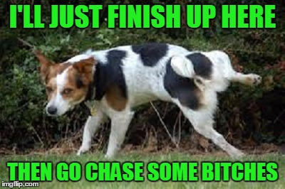 I'LL JUST FINISH UP HERE THEN GO CHASE SOME B**CHES | made w/ Imgflip meme maker