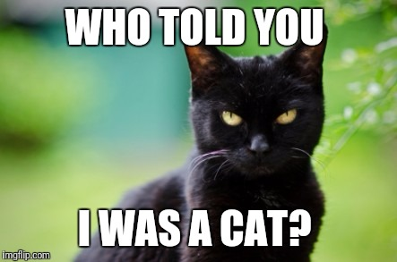 WHO TOLD YOU I WAS A CAT? | made w/ Imgflip meme maker