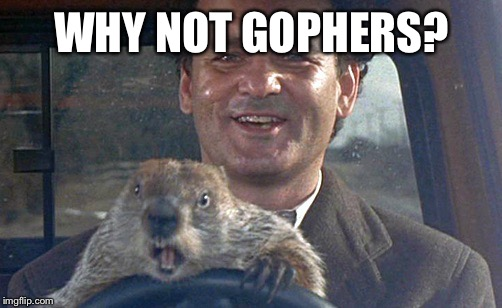 Don't Drive Angry | WHY NOT GOPHERS? | image tagged in don't drive angry | made w/ Imgflip meme maker