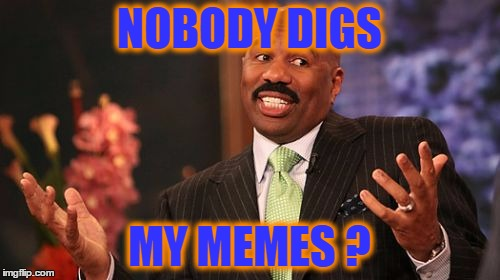 Steve Harvey Meme | NOBODY DIGS MY MEMES ? | image tagged in memes,steve harvey | made w/ Imgflip meme maker