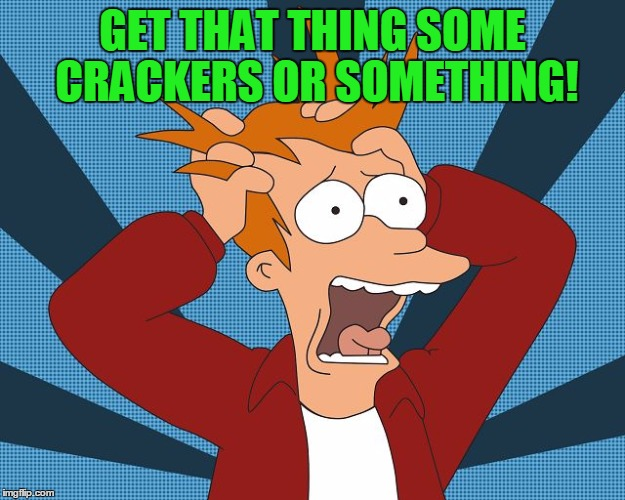 Fry Losing His Mind | GET THAT THING SOME CRACKERS OR SOMETHING! | image tagged in fry losing his mind | made w/ Imgflip meme maker