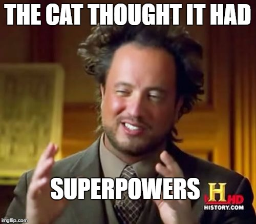 Ancient Aliens Meme | THE CAT THOUGHT IT HAD SUPERPOWERS | image tagged in memes,ancient aliens | made w/ Imgflip meme maker