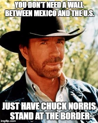 Chuck Norris Meme | YOU DON'T NEED A WALL BETWEEN MEXICO AND THE U.S. JUST HAVE CHUCK NORRIS STAND AT THE BORDER | image tagged in memes,chuck norris | made w/ Imgflip meme maker