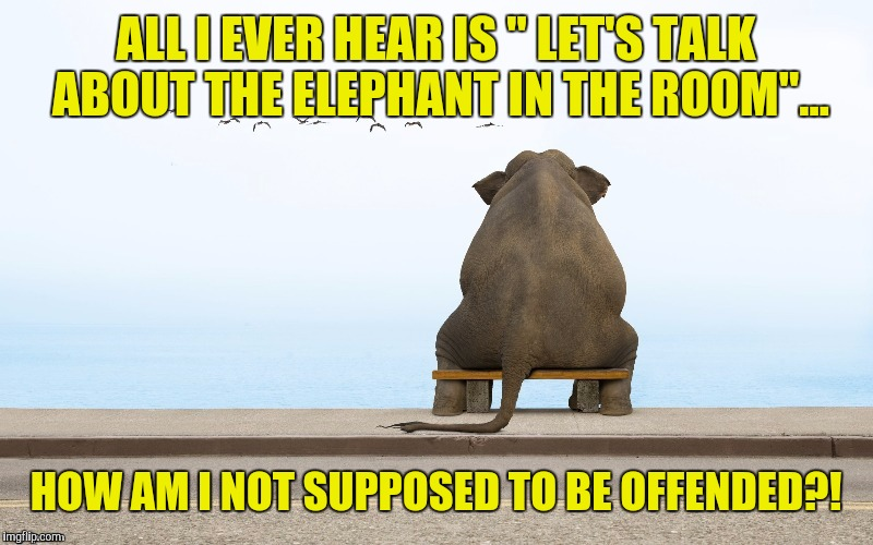 "ALL I EVER HEAR IS "" LET'S TALK ABOUT THE ELEPHANT IN THE ROOM""... HOW AM I NOT SUPPOSED TO BE OFFENDED?! 