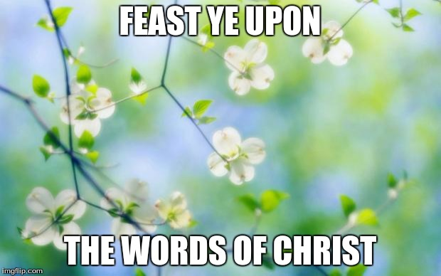 flowers | FEAST YE UPON THE WORDS OF CHRIST | image tagged in flowers | made w/ Imgflip meme maker
