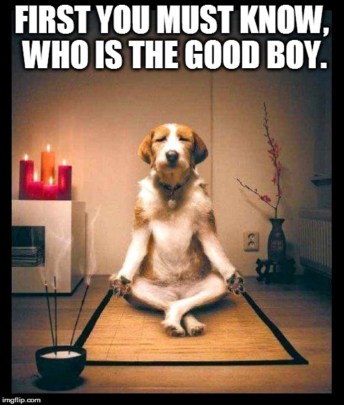 FIRST YOU MUST KNOW, WHO IS THE GOOD BOY. | made w/ Imgflip meme maker