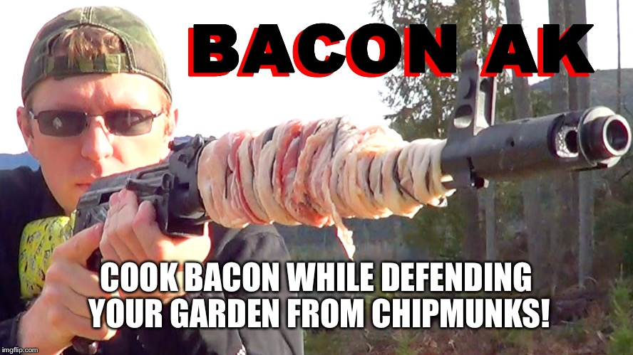 COOK BACON WHILE DEFENDING YOUR GARDEN FROM CHIPMUNKS! | made w/ Imgflip meme maker