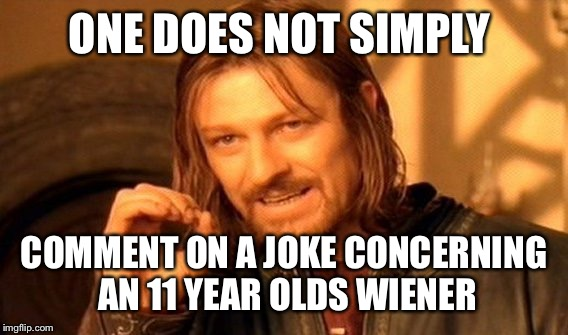 One Does Not Simply Meme | ONE DOES NOT SIMPLY COMMENT ON A JOKE CONCERNING AN 11 YEAR OLDS WIENER | image tagged in memes,one does not simply | made w/ Imgflip meme maker