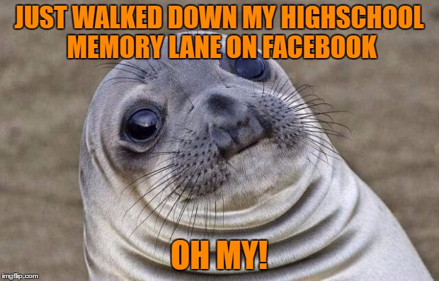 Awkward Moment Sealion Meme | JUST WALKED DOWN MY HIGHSCHOOL MEMORY LANE ON FACEBOOK OH MY! | image tagged in memes,awkward moment sealion | made w/ Imgflip meme maker