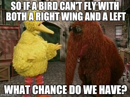 Big Bird And Snuffy | SO IF A BIRD CAN'T FLY WITH BOTH A RIGHT WING AND A LEFT WHAT CHANCE DO WE HAVE? | image tagged in memes,big bird and snuffy | made w/ Imgflip meme maker