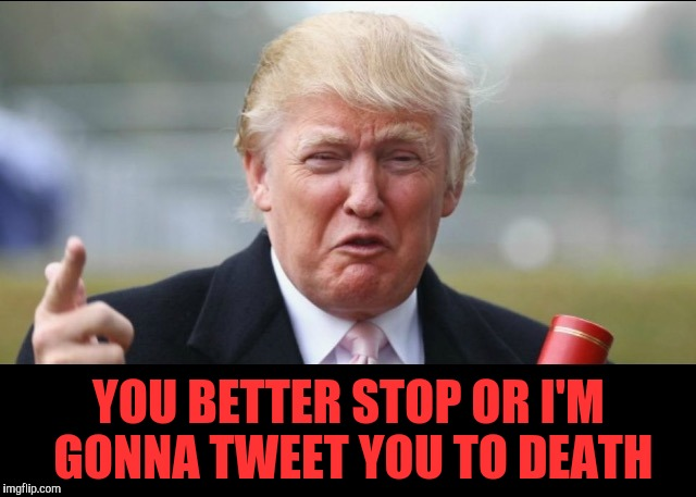 Donald Trump Crying  |  YOU BETTER STOP OR I'M GONNA TWEET YOU TO DEATH | image tagged in donald trump crying | made w/ Imgflip meme maker