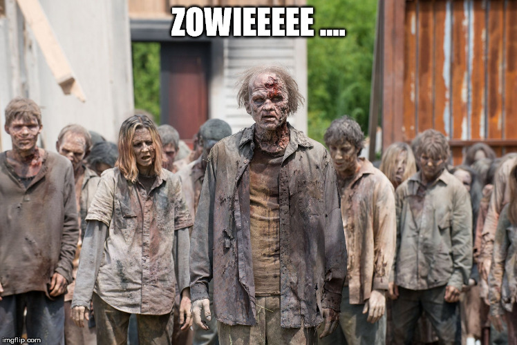 1man9f image tagged in walking dead zombies,memes,gamergate imgflip