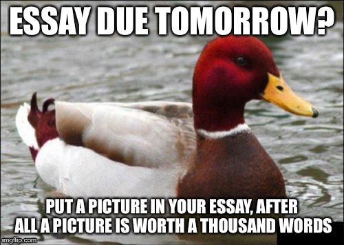 Malicious Advice Mallard Meme | ESSAY DUE TOMORROW? PUT A PICTURE IN YOUR ESSAY, AFTER ALL A PICTURE IS WORTH A THOUSAND WORDS | image tagged in memes,malicious advice mallard,funny | made w/ Imgflip meme maker
