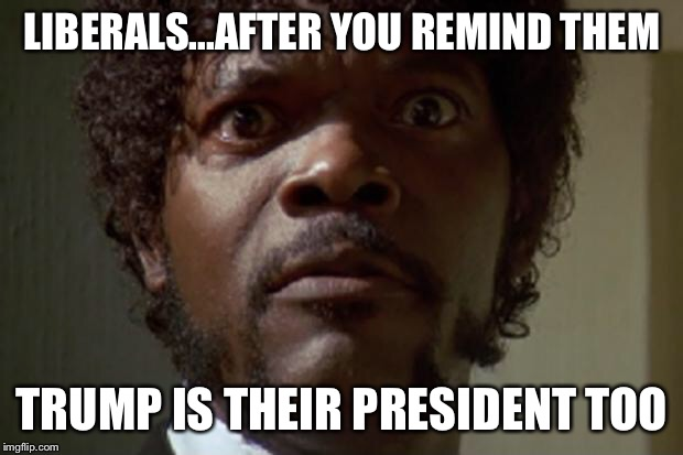 Liberal Outrage  | LIBERALS...AFTER YOU REMIND THEM TRUMP IS THEIR PRESIDENT TOO | image tagged in samuel l jackson | made w/ Imgflip meme maker