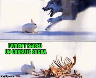"They say that ""things aren't always what they seem in the wild""... 