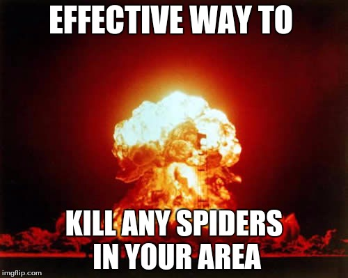 Nuclear Explosion Meme | EFFECTIVE WAY TO KILL ANY SPIDERS  IN YOUR AREA | image tagged in memes,nuclear explosion | made w/ Imgflip meme maker