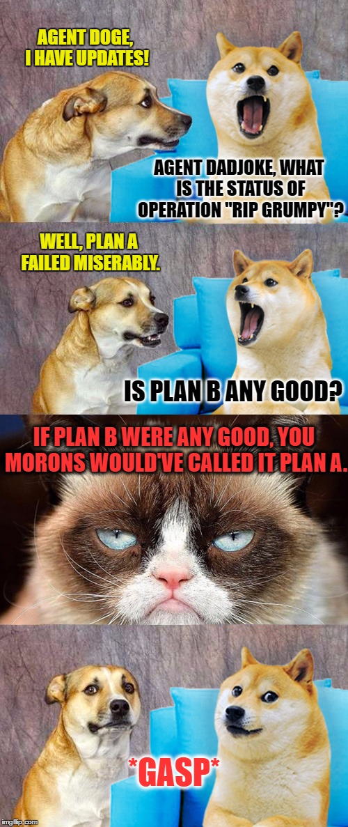"Hitmutt Absolution | AGENT DOGE, I HAVE UPDATES! AGENT DADJOKE, WHAT IS THE STATUS OF OPERATION ""RIP GRUMPY""? WELL, PLAN A FAILED MISERABLY. IS PLAN B ANY GOOD?  