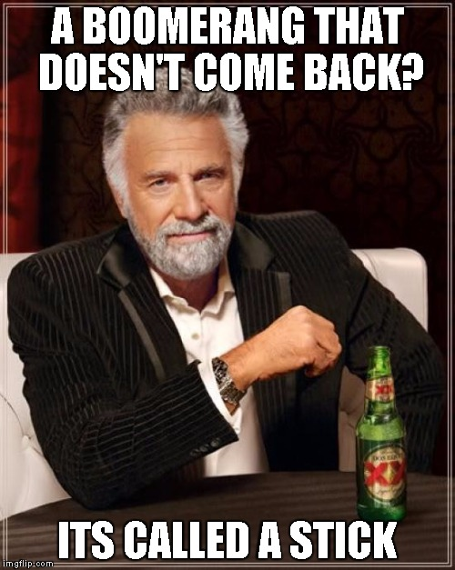 The Most Interesting Man In The World Meme | A BOOMERANG THAT DOESN'T COME BACK? ITS CALLED A STICK | image tagged in memes,the most interesting man in the world | made w/ Imgflip meme maker