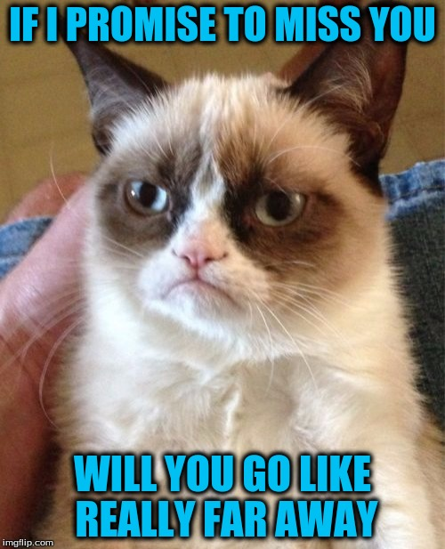 Grumpy Cat Meme | IF I PROMISE TO MISS YOU WILL YOU GO LIKE REALLY FAR AWAY | image tagged in memes,grumpy cat | made w/ Imgflip meme maker