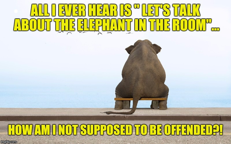 Thanx to Lafonso for the template, and TammyFaye for the encouragement to submit, so if this goes south I blame her, heh heh. | . | image tagged in sewmyeyesshut,funny memes,memes,contemplation elephant | made w/ Imgflip meme maker