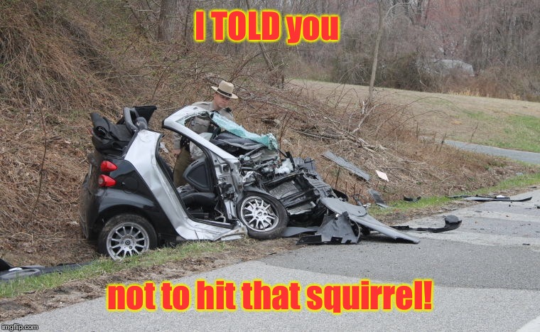 Smart Car accident | I TOLD you not to hit that squirrel! | image tagged in memes,smart car,squirrel accident,warning,funny | made w/ Imgflip meme maker