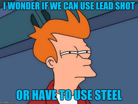 Futurama Fry Meme | I WONDER IF WE CAN USE LEAD SHOT OR HAVE TO USE STEEL | image tagged in memes,futurama fry | made w/ Imgflip meme maker