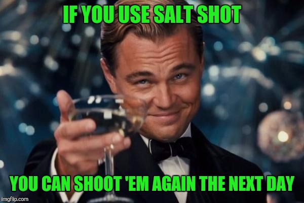 Leonardo Dicaprio Cheers Meme | IF YOU USE SALT SHOT YOU CAN SHOOT 'EM AGAIN THE NEXT DAY | image tagged in memes,leonardo dicaprio cheers | made w/ Imgflip meme maker