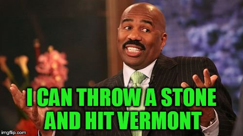 Steve Harvey Meme | I CAN THROW A STONE AND HIT VERMONT | image tagged in memes,steve harvey | made w/ Imgflip meme maker