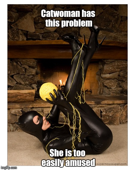 Superhero week : Not so Superheroes | Catwoman has this problem She is too easily amused | image tagged in catwoman,funny | made w/ Imgflip meme maker