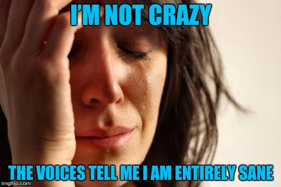 First World Problems Meme | I'M NOT CRAZY THE VOICES TELL ME I AM ENTIRELY SANE | image tagged in memes,first world problems | made w/ Imgflip meme maker