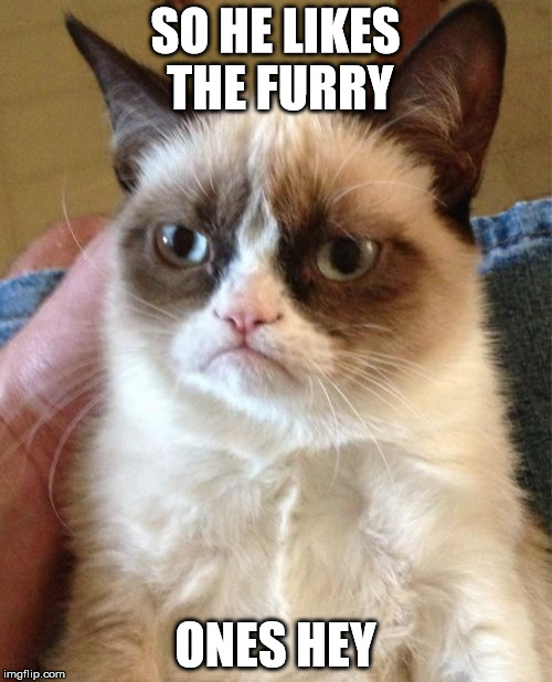 Grumpy Cat Meme | SO HE LIKES THE FURRY ONES HEY | image tagged in memes,grumpy cat | made w/ Imgflip meme maker