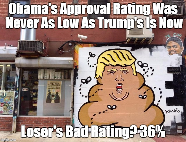 """Obama's Approval Rating Was Never As Low As Trump's Is Now"" 