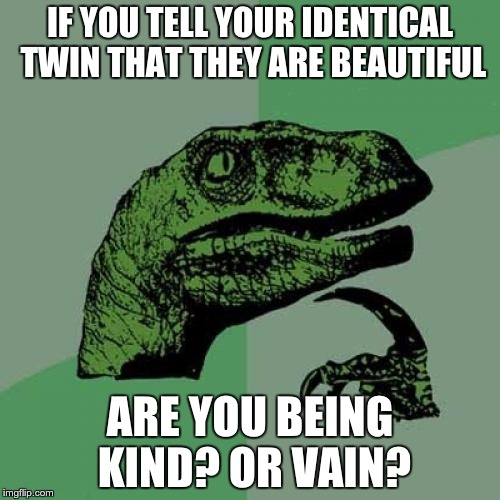 Philosoraptor Meme | IF YOU TELL YOUR IDENTICAL TWIN THAT THEY ARE BEAUTIFUL ARE YOU BEING KIND? OR VAIN? | image tagged in memes,philosoraptor | made w/ Imgflip meme maker