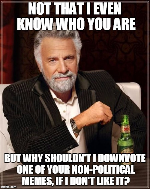 The Most Interesting Man In The World Meme | NOT THAT I EVEN KNOW WHO YOU ARE BUT WHY SHOULDN'T I DOWNVOTE ONE OF YOUR NON-POLITICAL MEMES, IF I DON'T LIKE IT? | image tagged in memes,the most interesting man in the world | made w/ Imgflip meme maker